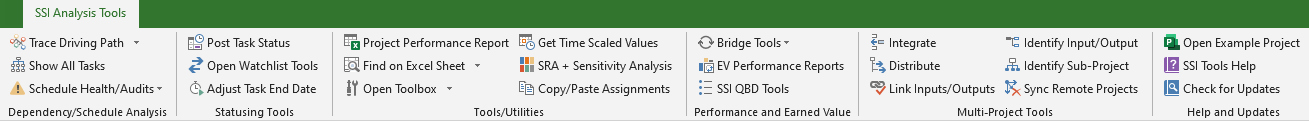SSI Tools for Microsoft Project Ribbon
