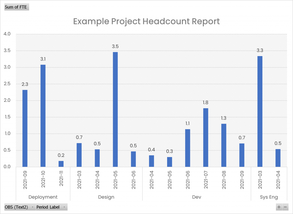 Example Project Headcount Report